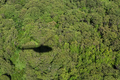 Shadow helicopter against the backdrop of forest. Stock Photography
