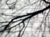 Shadow Hoop. Soft shadows of trees and a basketball hoop on a garage door Stock Photo