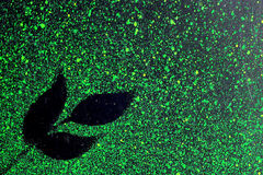 Shadow of leave. From green water dot Stock Photos