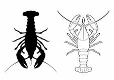Shadow of a lobster. Vector illustration of a crustacean, file EPS 10 Royalty Free Illustration
