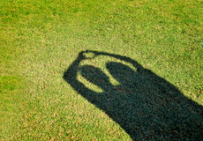 Shadow of love. On green grass Stock Photography