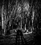 Shadow lovers stock photo