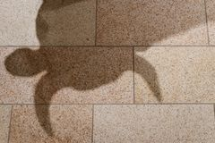 Shadow of bull statue on texture tiles floor metaphor of bull market is coming for stock market or investment asset. Shadow of male bull statue on texture tiles royalty free stock photo