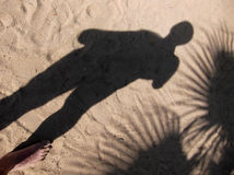 The shadow of a man and palm trees on the sand. Royalty Free Stock Photography
