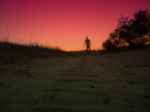 Shadow man on red   sunset Stock Photo
