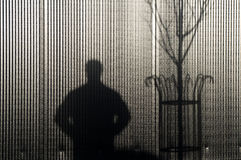 Shadow man and tree. Shadow of man and tree on background of metallic cladding Stock Photos