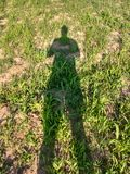Shadow of man watching his crops Royalty Free Stock Photography