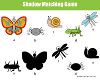 Shadow matching children educational game. Find the right shadow task for kids. Find the correct shadow for insects Royalty Free Stock Image