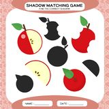 Shadow matching game. Find the correct shadows. Activity page for kids. Kindergarten worksheets by matching colorful stock illustration