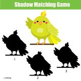 Shadow matching game. Kids activity with cartoon parrot. Shadow matching game for children. Find the right shadow for cartoon parrot. Activity for preschool kids Stock Photography