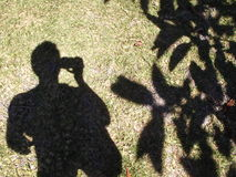 Shadow Of My Former Self. Shadow of myself taken next to a tree in the blazing sunshine Stock Images