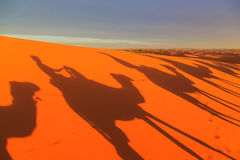Free Shadow Of A Caravan Of Camels With Tourist In The Desert At Suns Stock Photography - 87287502