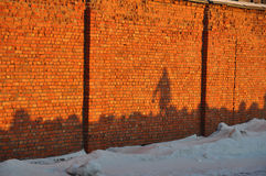 Shadow on the orange wall Stock Images