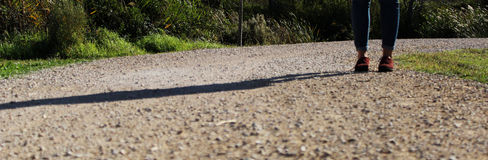 Shadow over a path Royalty Free Stock Photo