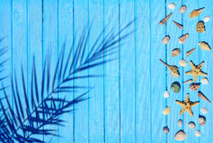 The shadow of the palm branch on a blue wooden surface Stock Image