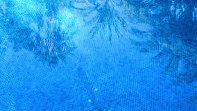 The shadow of a palm tree leafs. In the pool stock footage
