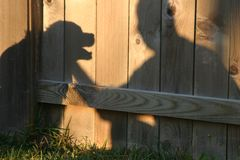 Shadow Pals. Shadow of Man and Dog Royalty Free Stock Images