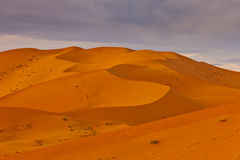 Shadow pattern on desert dunes in Sahara Stock Image