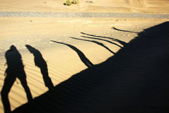 Shadow of people in desert Stock Images