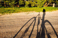 Shadow of a person on a mountain bike on a dirt track Stock Images
