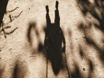 Shadow of person in sand Stock Photos