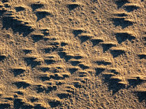 Shadow play on sand dune Royalty Free Stock Image