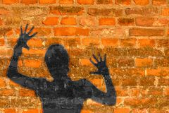 Shadow Prisoner. Mysterious shade imprioned in the brick wall Stock Photography
