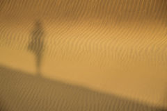 Shadow on the sand dunes Royalty Free Stock Photography