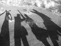Shadow in the sand. Shadow of four friends in the northern territories of the Australian outback Royalty Free Stock Images