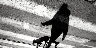 Shadow silhouette of a person and a dog on a leash crossing the. Shadow silhouette of a person walking a dog on a leash and crossing the street Stock Image
