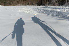 Shadow silhouette of tourists skiing in the snow Royalty Free Stock Photo