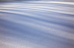 Shadow on the Snow. Many shadow lines appear on the crisp white snow Royalty Free Stock Photos