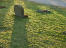 Shadow of sorrow. A gravestone on a graveyard makes a long shadow in the evening light Stock Image