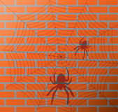 Shadow of spiders and web on a brick wall Royalty Free Stock Photo