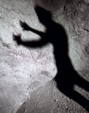 Shadow Stalker Stock Photos
