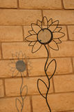Shadow Upon a Sunflower. A wrought iron sunflower garden stake casts its shadow upon a wall Stock Photo