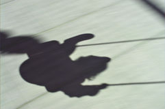 Shadow swing Royalty Free Stock Photo
