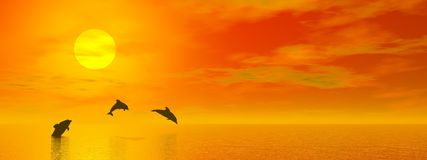 Dolphins by sunset - 3D render Royalty Free Stock Photo