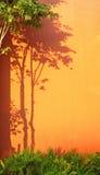 Shadow of tree. On an orange wall stock photography