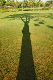 Shadow of Tree. Early morning shadow of trees in the field of golf Royalty Free Stock Photo
