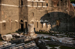Shadow of the tree on the ancient ruins in Rome Royalty Free Stock Photography