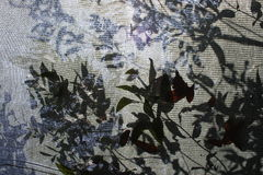 Shadow of tree branches. On fabric. Summer atmosphere. A hot day. Siesta Royalty Free Stock Photos