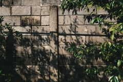 Shadow of trees on the brick wall. Shadow of trees on the old brick wall royalty free stock photo
