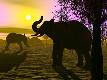 Elephants by sunset - 3D render. Shadow of two elephants standing in the savannah by sunset Royalty Free Stock Image
