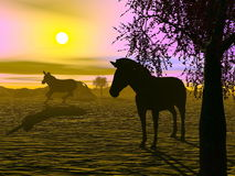 Zebras by sunset - 3D render. Shadow of two zabras standing in the savannah by sunset Stock Photo