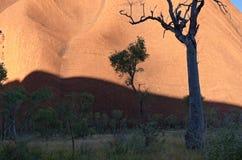 In the Shadow of Uluru Stock Image