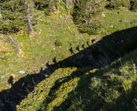 The shadow of the walkers. When you climb up the mountain and you do not notice other things royalty free stock photo