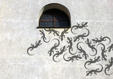 Shadow on the wall lizard Stock Images