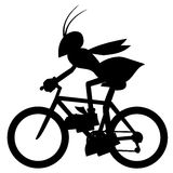 Shadow wasp Stock Photo