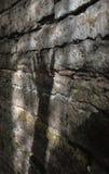 Shadow  on a bricks wall royalty free stock photography
